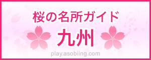 九州 桜の名所スポット[花見 観光ガイド]