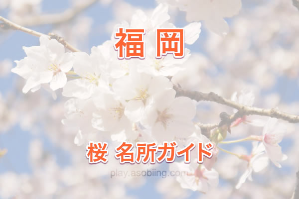 [福岡]桜の名所・お花見