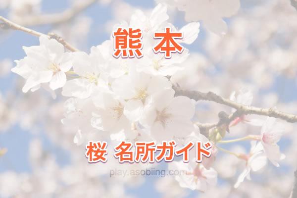 [熊本]桜の名所・お花見