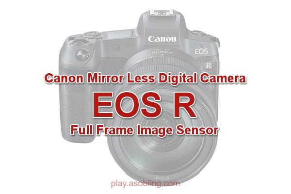 EOS R[Canon フルサイズミラーレス]