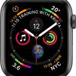 文字盤 インフォグラフ[2019 新型 Apple Watch 5]