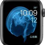 文字盤 モーション[2019 新型 Apple Watch 5]