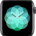 文字盤 呼吸[2019 新型 Apple Watch 5]