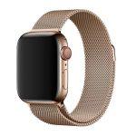 ステンレススチール[2019 新型 Apple Watch 5]