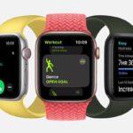 外観デザイン画像[2020 新機種 Apple Watch SE]