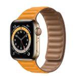 外観デザイン画像[2020 新型 Apple Watch 6]