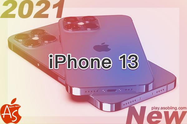 コネクタ ワイヤレス充電[2021年モデル 新型 iPhone 13]