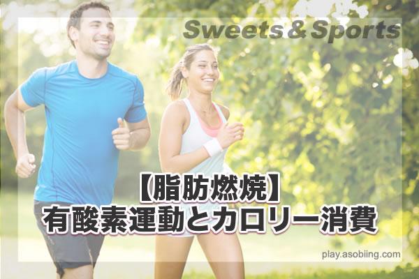 運動別カロリー消費[スポーツと脂肪燃焼]